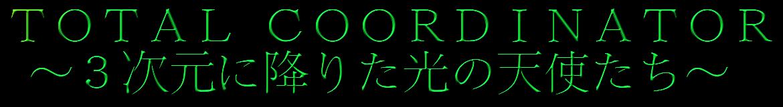 TOTAL  COORDINATOR    〜3次元に降りた光の天使たち〜